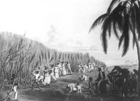 Slavery in colonial and antebellum periods